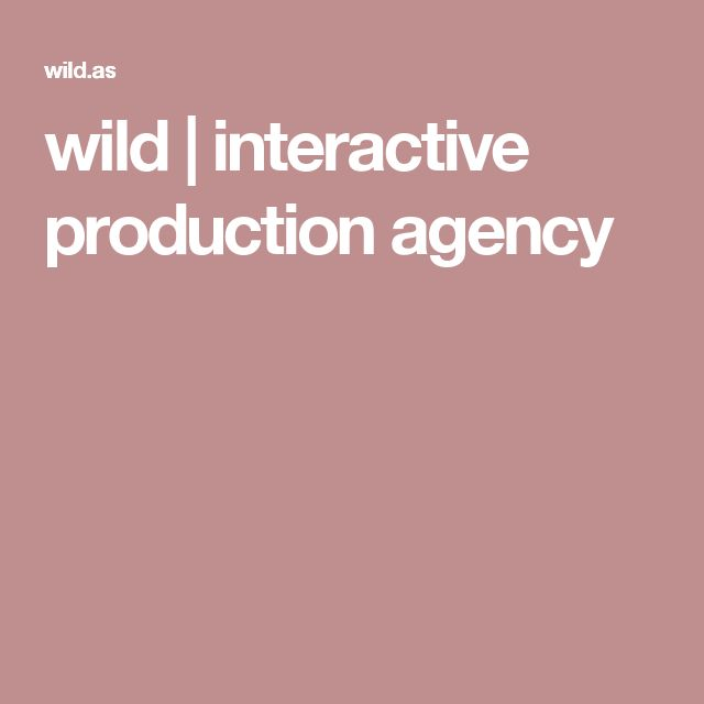 wild | interactive production agency