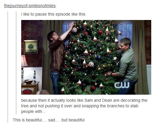 """I like to pause this episode like this [...] because then it actually looks like Sam and Dean are decorating the tree and not pushing it over and snapping the branches to stab people with…"""
