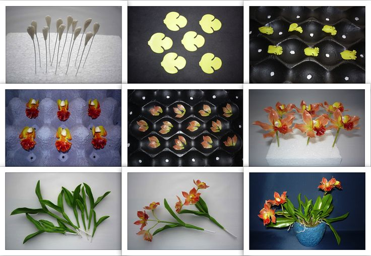 Laeliocattleya Thai Glow orchid - orchidea - https://www.facebook.com/Csodavirag