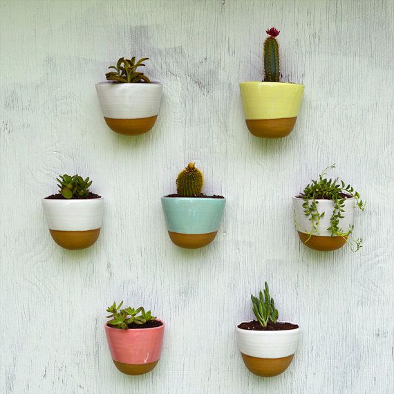 Colourful terracotta planters full of succulents and cacti #houseplants #decor