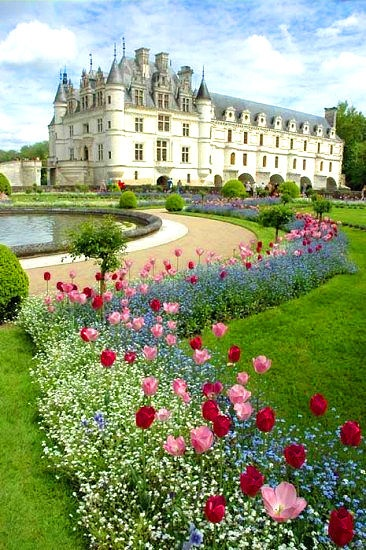 Chenonceau chateau with spring bulbs