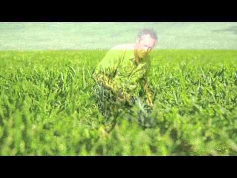 Here at Lilydale Instant Lawn, we measure in QWELTS. What's a QWELT? Watch our video!