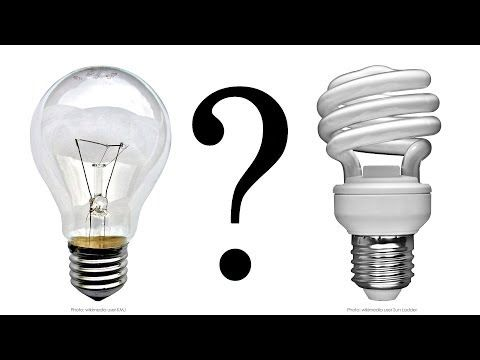 How Light Bulbs Work and Activities for Learning About Electricity