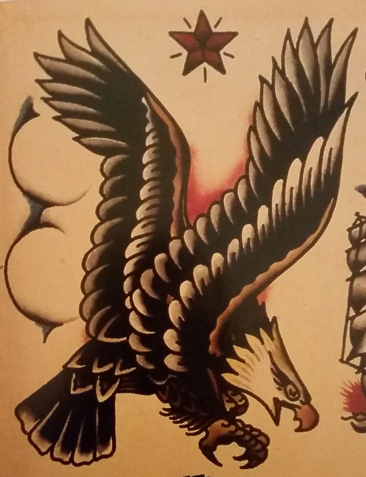 Traditional/old school tattoo, sailor jerry, eagle, bird ...
