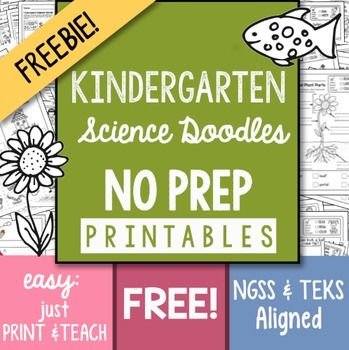 I+worry+that+Science+gets+overlooked+in+the+early+grades+and+that+is+why+I+offer+this+13+page+FREEBIE+that+is+part+of+my:200++Page+NO+PREP+Science+Kindergarten+Printables+packed+with+engaging+ways+to+teach+Science!+Unigue+drawings+that+help+students+understand+concepts,+TEKS+and+NGSS+aligned.