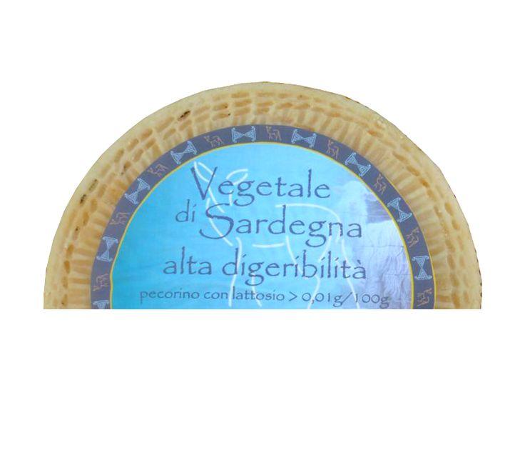 Pecorino Vegetale Laktose < 0,01%, Su Grabiolu:  Ein vegetarischer, annähernd laktosefreier Pecorino Canestrato mit gerillter Rinde.   Aus reiner Schafsrohmilch hergestellt, mittelhart und mit dem typisch Sardischen Geschmack der unberührten Natur zeigt dieser Pecorino feinste Löcher. Durch die Verwendung von speziellen, trüffelähnlichen Bodenpilzen anstatt von Lab ein völlig vegetarischer, schmackhafter Käse Sardiniens.