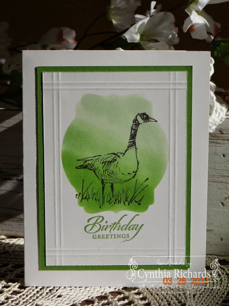 Stampin' Up! wetlands, birthday, ombre technique,ssink