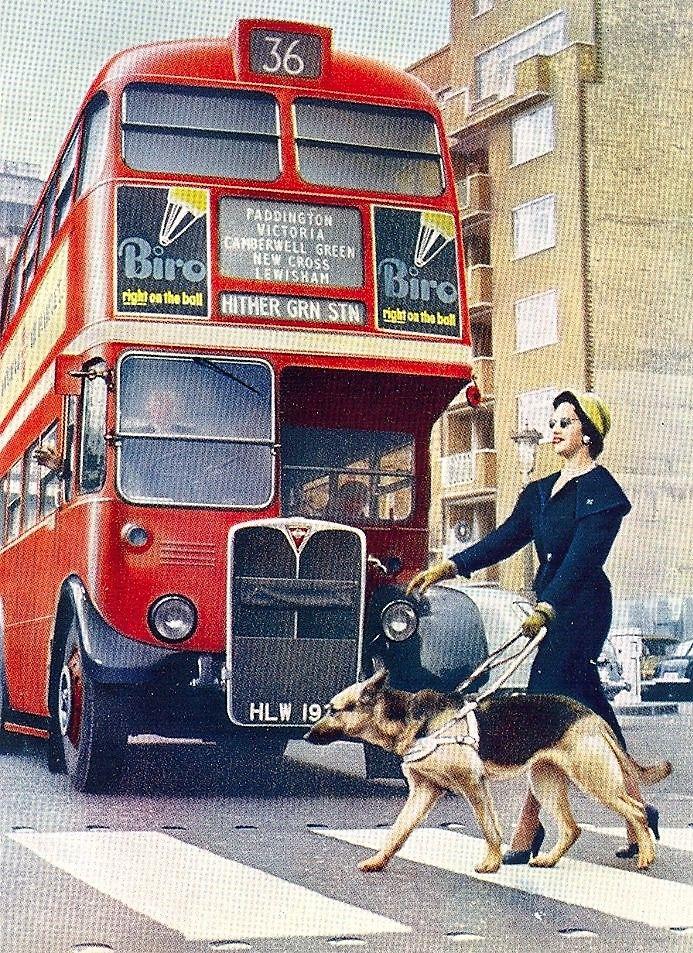 London Transport Rt210 Hlw197 1960 S London Transport London Bus Transportation
