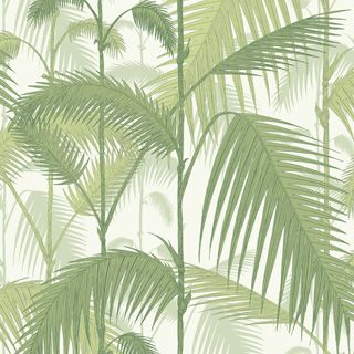 FAVORIT: Palm Jungle 95/1001 - Contemporary Restyled - Cole & Son