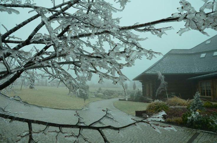Chochołowy Dwór skuty lodem i oprószony śniegiem // Chochołowy Dwór under ice and snow  #lód #śnieg #zima #Krakow #Cracow #ice #winter