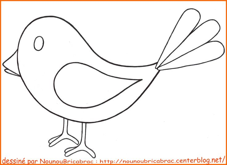 Dessin Facile Oiseau Picture