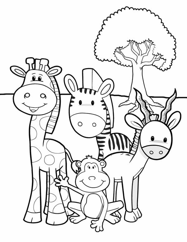 Safari, : Meet Animals at African Safari Coloring Page