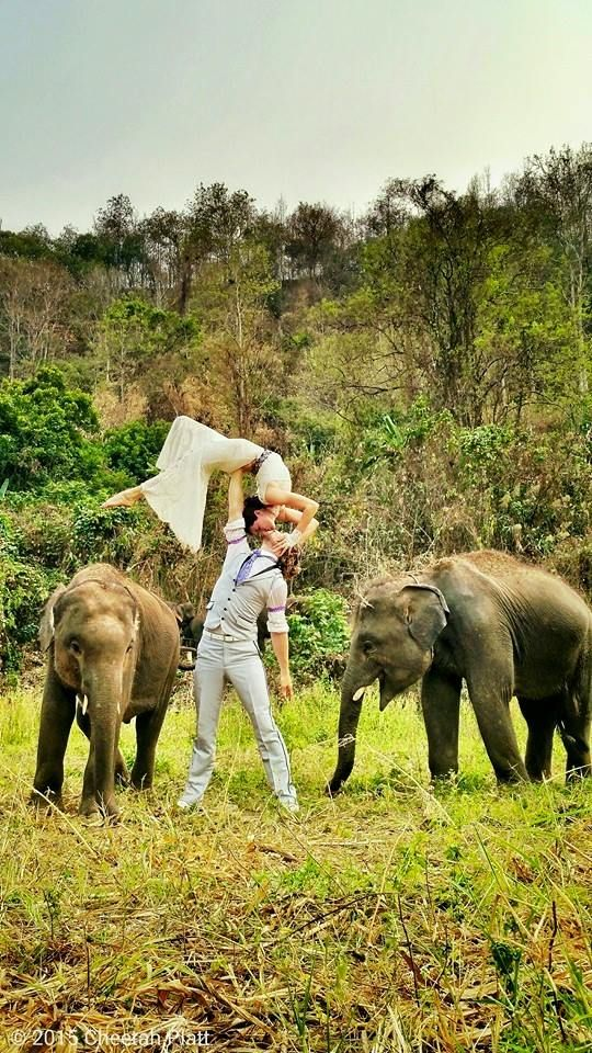 Ran-Tong (Save & Rescue Elephant Centre) Chiang Mai, Thailand This Creative Couple Got Married In 38 Different Places Around The World • Page 4 of 6 • BoredBug