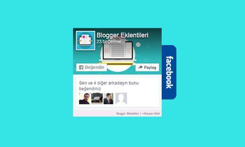 Blogger sitelerinde facebook popülaritesinin artmasıyla kullanım koşulları da…