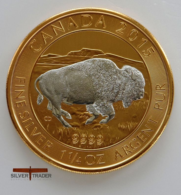 2015 Canadian Bison 38 gram Gold gilded Silver bullion Coin features the Bison running through a prairie, a 1.1/4 ounce bullion coin.