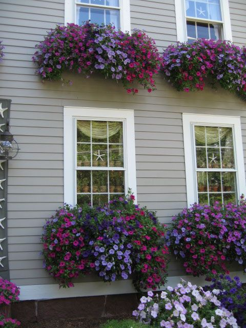 Awesome window boxes too! |Pinned from PinTo for iPad| cuteee