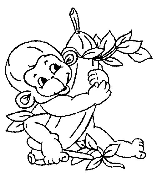 36 Best Coloring Pages Images On Pinterest Coloring Books Coloring Pages Of Monkeys