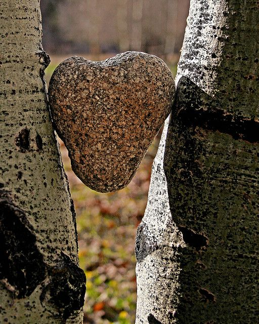 *heart of stone