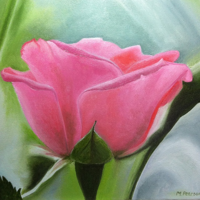 Pink Rose. Oil on canvas