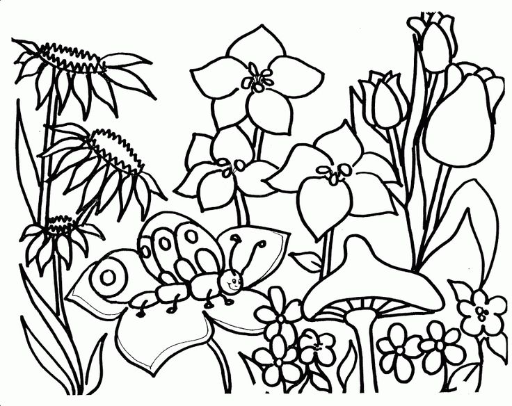 Flower Garden Coloring Pages Flower Coloring Pages