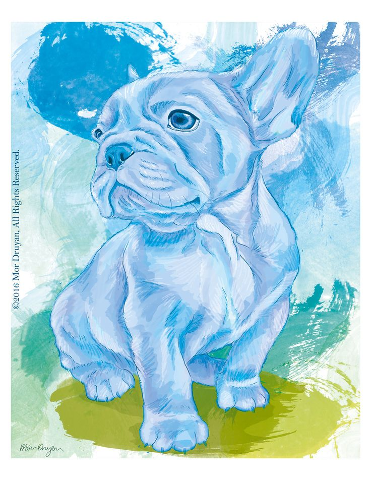 Here's one of the latest additions to my #etsy shop: French Bulldog Puppy Art Print Of Original Painting-8x10-French Bulldog-Nursery Decor-Pet Portrait-French Bulldog Gifts-Bulldog Print #art #print #giclee #blue #green #dogdrawing #artprint #cute #puppy http://etsy.me/2oNOUkS