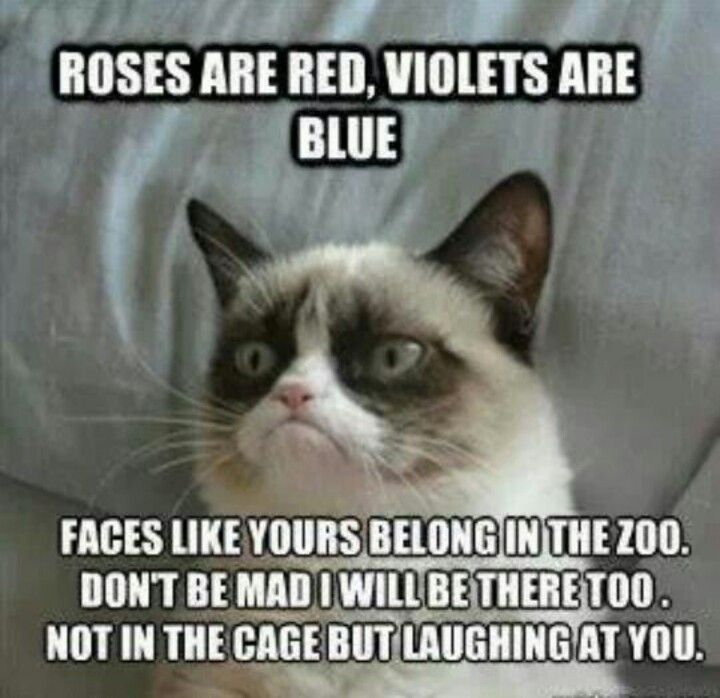 Good poem grumpy cat l...