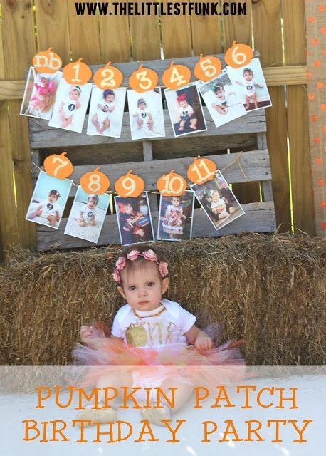 Pumpkin Patch Birthday Party