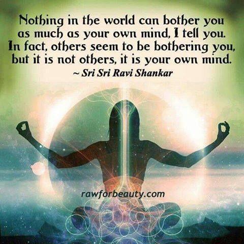 世界中にあるもので、あなたの考えほどあなたを悩ませているものはありません。本当です。 実際には他人があなたを悩ませているように思えるのですが、それは他人ではありません。あなたの考えなのです。 シュリ・シュリ・ラヴィ・シャンカール