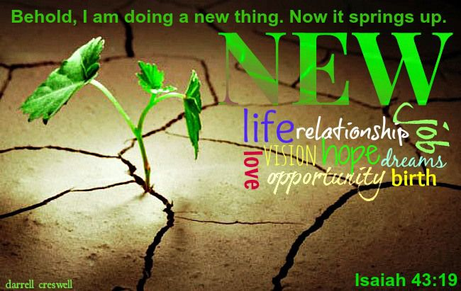 scriptures /  Isaiah 43:19 Behold, I am doing a new thing. Now it springs up.