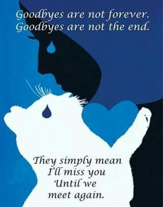 Good byes are not forever...                                                                                                                                                                                 More