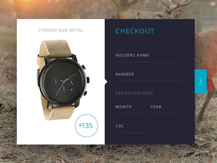 Daily UI :: 002 Day 002 Credit Card Checkout