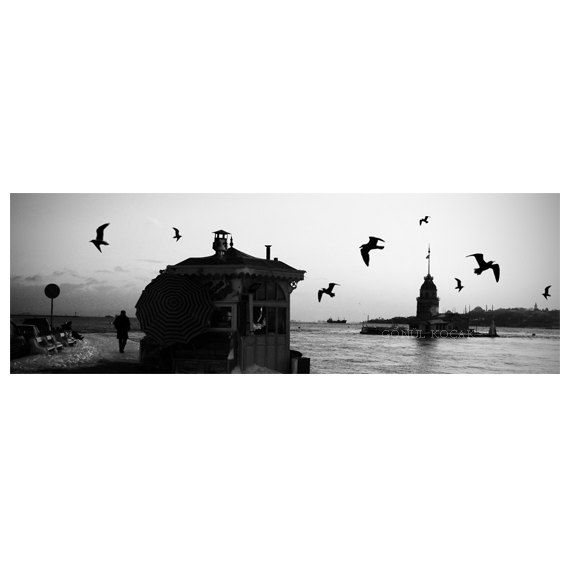 istanbul panorama print  Black and white Large Fine Art by gonulk, $100.00  #HomeDecor #WallDecor #Landscape #Etsy #etsyonsale #Photography #Print #ArtPrint #HomeDecorating #photo #istanbul #city #urban #walldecorideas #roominteriordecoration #WallArtPrints #prints #panorama #panoramic #housewarming #officedecor