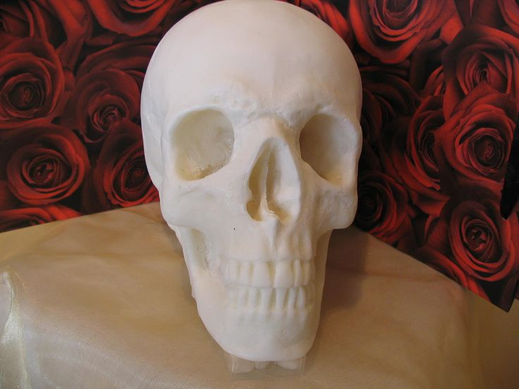 Skull Candle - Large Handmade Everlasting Skull - available in an array of colours. - pinned by pin4etsy.com