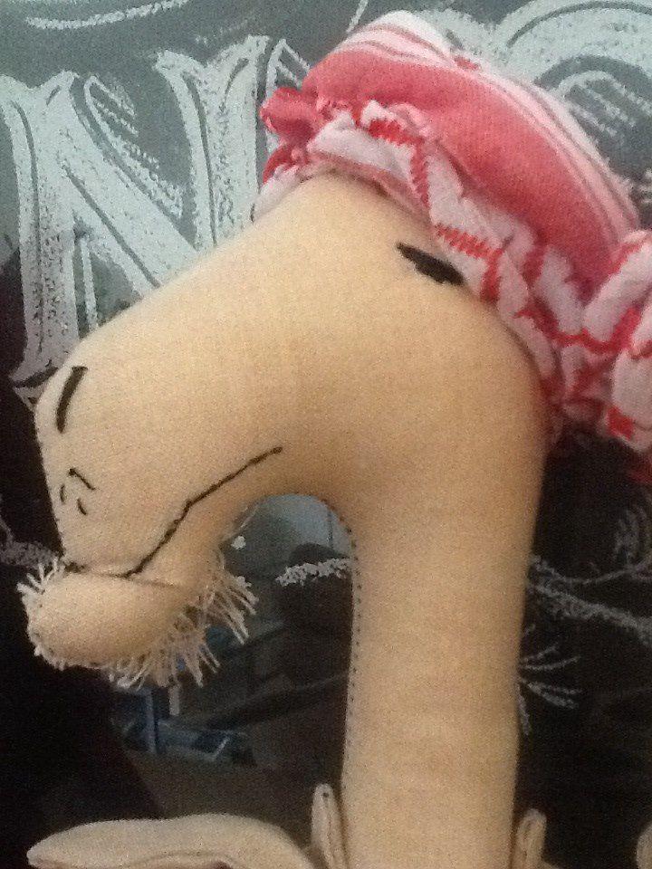 Rag camel  https://www.facebook.com/elianaroqueragdolls?fref=ts