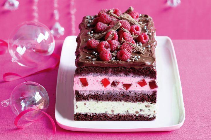 Christmas celebration chocolate ice-cream cake