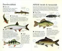 édesvízi halak