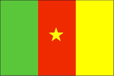 The Cameroon flag was officially adopted on May 20th, 1975, and the pattern reflects the French Tricolore.           The red symbolizes unity, as well as the centered yellow star. Green represents hope and the yellow prosperity. Those colors combined are the official Pan-African colors.