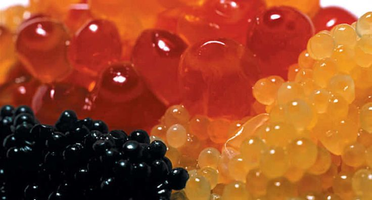 About Caviar - Information article on caviar. The four main types of caviar are Beluga, Sterlet, Ossetra, and Sevruga. The rarest and costliest is from beluga sturgeon that swim in the Caspian Sea, which is bordered by Iran, Kazakhstan, Russia, Turkmenistan and Azerbaijan.  - http://aussietaste.recipes/seafood/about-caviar/