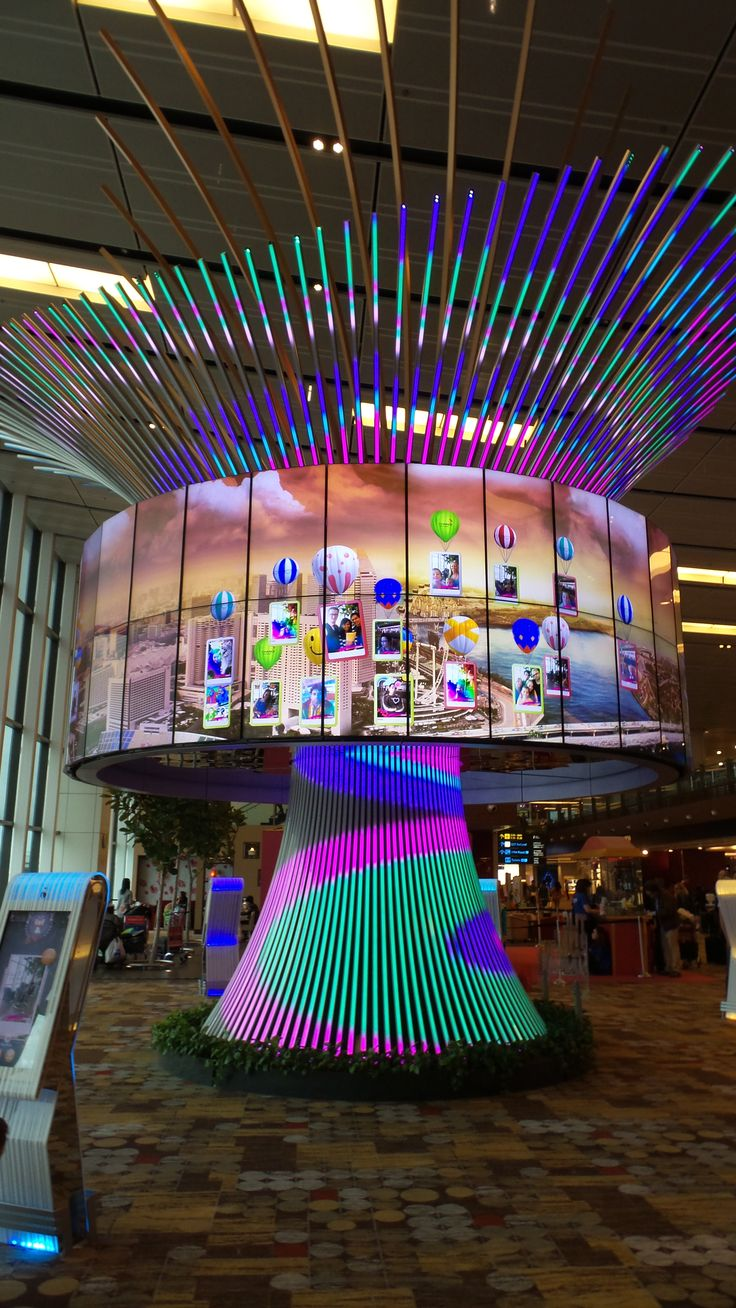 Waiting for your flight at Changi Airport in Singapore can be fun, make sure to visit the Social Tree.