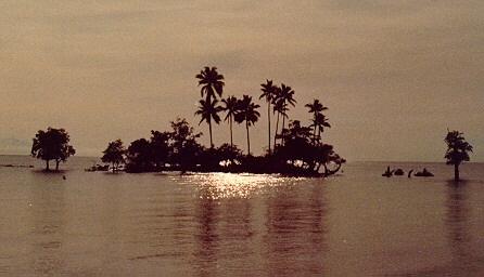 pasir padi beach (image credit:  lim keng tjoe)