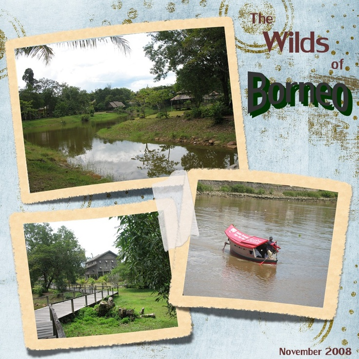 The Wilds of Borneo - Scrapbook.com