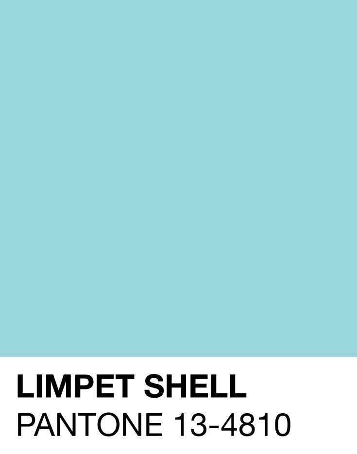 A shade of aqua that leans toward the green family, PANTONE 13-4810 Limpet Shell is clear, clean and defined. Suggestive of clarity and freshness, its crisp and modern influences evoke a deliberate, mindful tranquility. -Leatrice Eiseman Executive Director, Pantone Color Institute™