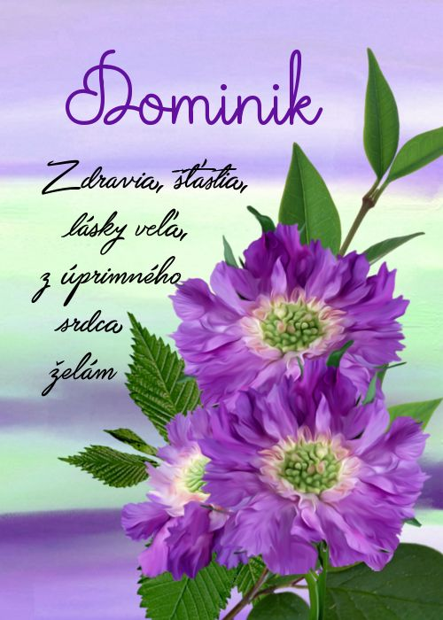 Dominik  Zdravia, šťastia, lásky veľa, z úprimného srdca želám