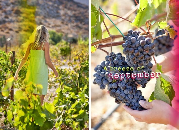 September first in Folegandros