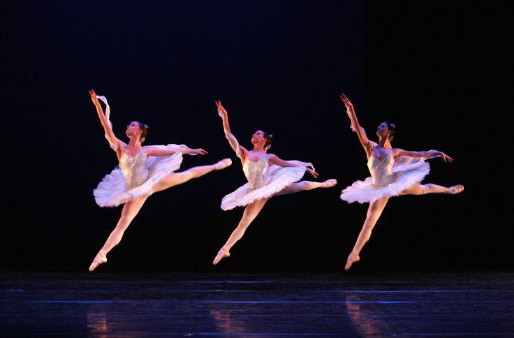 https://flic.kr/p/naJ4ta | La Bayadère, The Kingdom of the Shades | Koninklijk Ballet Vlaanderen in La Bayadère by Cynthia Harvey (after Marius Petipa) © Hans Gerritsen