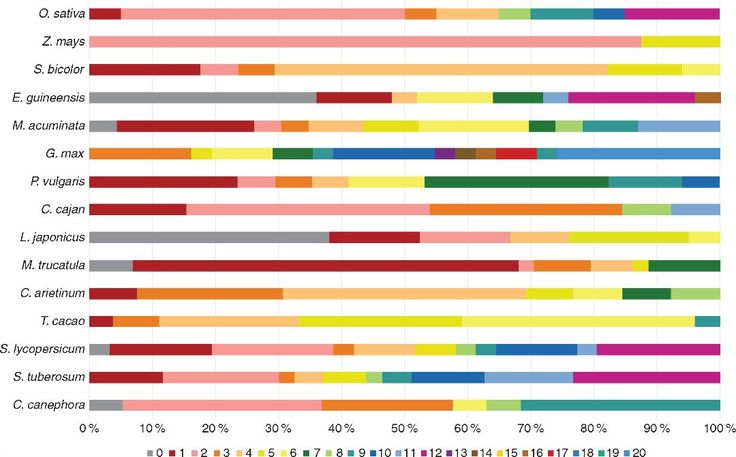 Lectins are an inherent component of plant immunity systems. Van Holle et al. study the occurrence and evolution of the family of Nictaba-like lectin genes and report the omnipresence of these genes in a wide range of plant species including major food crops.  Chromosomal distribution of NLL genes across different species. All chromosomes are visualized in distinct colours and chromosome zero is defined by the scaffolds that could not be mapped on any of the chromosomes. Many of these…