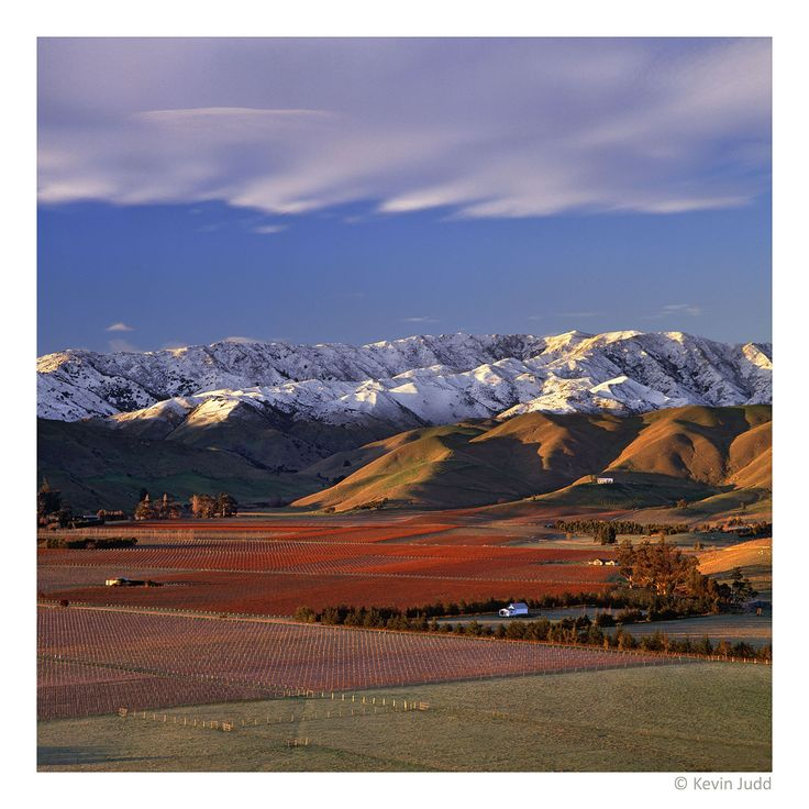 Upper Brancott Valley, Marlborough, New Zealand
