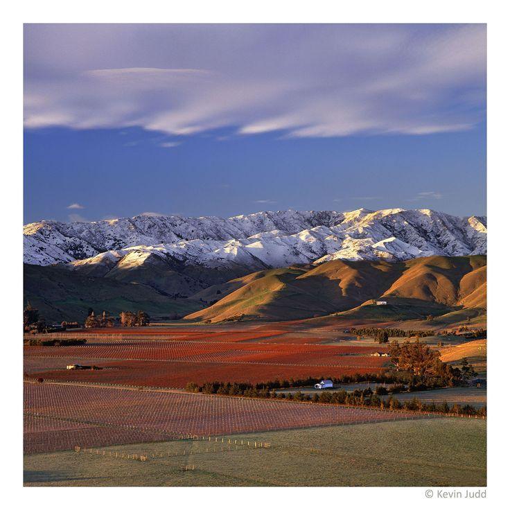 Upper Brancott Valley, Marlborough, New Zealand
