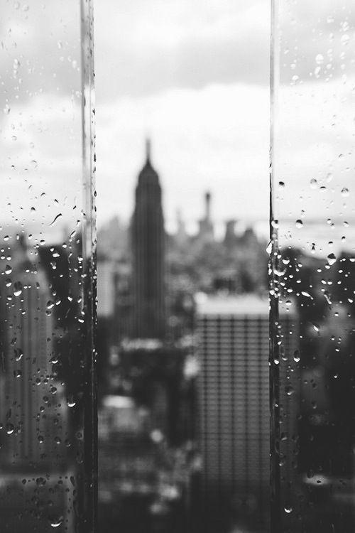 Through the Glass | New York City