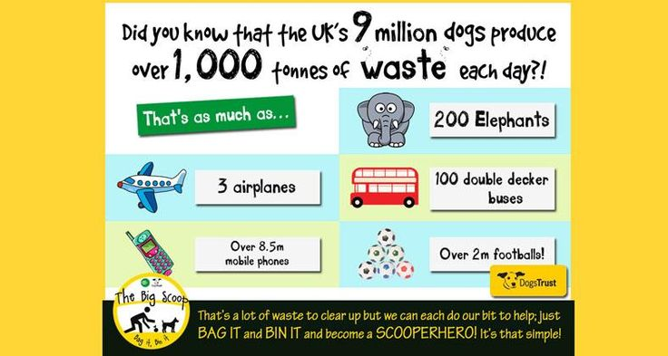 #cleanitup Wolverhampton - we really love dogs but can't stand their poo!  They really can't pick it up - but their owners/carers can!  #TheBigScoop #DogsTrust